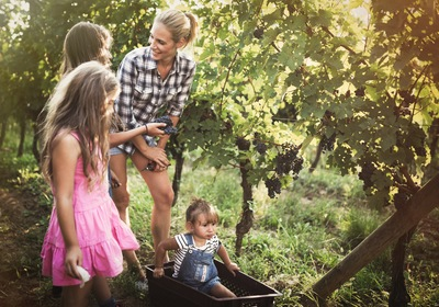 5 Seasonal Activities for the Family